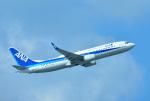 mojioさんが、那覇空港で撮影した全日空 737-8ALの航空フォト(写真)