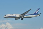 やまちゃんKさんが、那覇空港で撮影した全日空 787-8 Dreamlinerの航空フォト(写真)