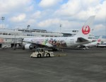 kumagorouさんが、鹿児島空港で撮影した日本航空 767-346/ERの航空フォト(写真)