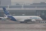 BENKIMAN-ENLさんが、羽田空港で撮影したエアバス A380-861の航空フォト(写真)