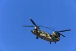 bakさんが、岐阜基地で撮影した航空自衛隊 CH-47J/LRの航空フォト(写真)