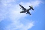 bakさんが、岐阜基地で撮影した航空自衛隊 C-130H Herculesの航空フォト(写真)