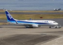 voyagerさんが、羽田空港で撮影した全日空 737-8ALの航空フォト(写真)