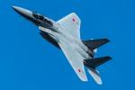 みぐさんが、岐阜基地で撮影した航空自衛隊 F-15DJ Eagleの航空フォト(写真)