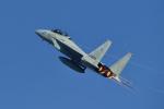 よしぱるさんが、岐阜基地で撮影した航空自衛隊 F-15DJ Eagleの航空フォト(写真)