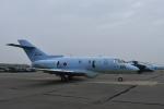 ワイエスさんが、千歳基地で撮影した航空自衛隊 U-125A(Hawker 800)の航空フォト(飛行機 写真・画像)