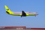 szkkjさんが、成田国際空港で撮影したジンエアー 737-86Nの航空フォト(写真)