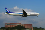 szkkjさんが、成田国際空港で撮影した全日空 777-381/ERの航空フォト(写真)