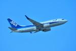 mojioさんが、那覇空港で撮影した全日空 737-781の航空フォト(飛行機 写真・画像)