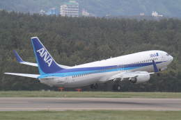 プルシアンブルーさんが、庄内空港で撮影した全日空 737-881の航空フォト(飛行機 写真・画像)