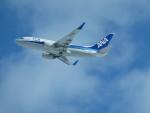 T_pontaさんが、新千歳空港で撮影した全日空 737-781の航空フォト(写真)