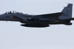 yokopen2さんが、小松島航空基地で撮影した航空自衛隊 F-15DJ Eagleの航空フォト(飛行機 写真・画像)