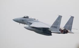 yokopen2さんが、浜松基地で撮影した航空自衛隊 F-15J Eagleの航空フォト(飛行機 写真・画像)
