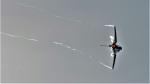 Ocean-Lightさんが、岐阜基地で撮影した航空自衛隊 F-2Bの航空フォト(写真)