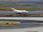 ハム太郎。さんが、羽田空港で撮影したエア・メディカル・サービス BAe-125/HS-125 (C-29)の航空フォト(写真)