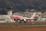 Lucky Manさんが、岡山空港で撮影した日本トランスオーシャン航空 737-8Q3の航空フォト(写真)