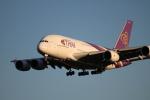 さおまるさんが、成田国際空港で撮影したタイ国際航空 A380-841の航空フォト(写真)