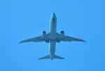 mojioさんが、那覇空港で撮影したアメリカ海軍 P-8A (737-8FV)の航空フォト(写真)