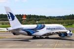 Kuuさんが、成田国際空港で撮影したマレーシア航空 A380-841の航空フォト(飛行機 写真・画像)
