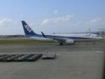 ヒロリンさんが、那覇空港で撮影した全日空 737-881の航空フォト(写真)