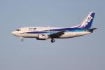 OMAさんが、成田国際空港で撮影したANAウイングス 737-54Kの航空フォト(飛行機 写真・画像)