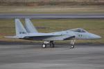 ロボキさんが、名古屋飛行場で撮影した航空自衛隊 F-15J Eagleの航空フォト(写真)
