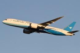 camelliaさんが、成田国際空港で撮影した厦門航空 787-9の航空フォト(写真)