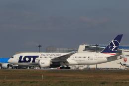 多楽さんが、成田国際空港で撮影したLOTポーランド航空 787-8 Dreamlinerの航空フォト(写真)