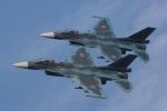 EXIA01さんが、築城基地で撮影した航空自衛隊 F-2Aの航空フォト(写真)
