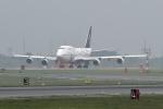 バーダーさんが、新千歳空港で撮影したタイ国際航空 747-4D7の航空フォト(写真)