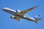 ちゃぽんさんが、成田国際空港で撮影した全日空 787-8 Dreamlinerの航空フォト(写真)