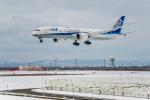 Cygnus00さんが、新千歳空港で撮影した全日空 787-9の航空フォト(写真)
