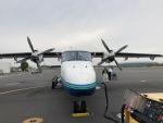 アミーゴさんが、調布飛行場で撮影した新中央航空 228-212の航空フォト(写真)