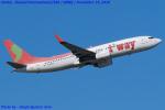 Chofu Spotter Ariaさんが、関西国際空港で撮影したティーウェイ航空 737-86Jの航空フォト(飛行機 写真・画像)