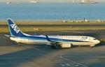 Dojalanaさんが、羽田空港で撮影した全日空 737-881の航空フォト(飛行機 写真・画像)