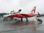 けろんさんが、浜松基地で撮影した航空自衛隊 T-4の航空フォト(写真)