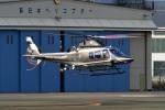 kamerajiijiさんが、東京ヘリポートで撮影した警視庁 A109S Trekkerの航空フォト(写真)