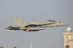 おぺちゃんさんが、新田原基地で撮影したアメリカ海軍 F/A-18C Hornetの航空フォト(写真)