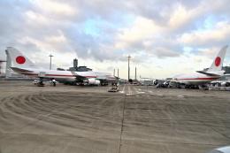 Cimarronさんが、羽田空港で撮影した航空自衛隊 747-47Cの航空フォト(写真)
