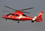 LOTUSさんが、八尾空港で撮影した福岡市消防局消防航空隊 AS365N3 Dauphin 2の航空フォト(写真)