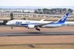 kumagorouさんが、仙台空港で撮影した全日空 787-8 Dreamlinerの航空フォト(飛行機 写真・画像)