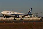 endress voyageさんが、伊丹空港で撮影した全日空 777-281/ERの航空フォト(写真)