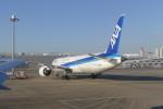 KKiSMさんが、羽田空港で撮影した全日空 787-9の航空フォト(写真)