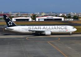 じーく。さんが、宮崎空港で撮影したアシアナ航空 767-38Eの航空フォト(写真)