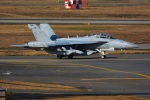 kaoatomさんが、三沢飛行場で撮影したアメリカ海軍 EA-18G Growlerの航空フォト(飛行機 写真・画像)