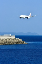 くれないさんが、徳島空港で撮影した日本航空 787-8 Dreamlinerの航空フォト(飛行機 写真・画像)