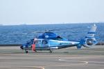 Mizuki24さんが、横浜ヘリポートで撮影した神奈川県警察 AS365N3 Dauphin 2の航空フォト(写真)