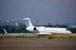 KAZKAZさんが、羽田空港で撮影したメキシコ企業所有 G-V-SP Gulfstream G550の航空フォト(飛行機 写真・画像)