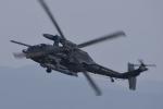 eikas11さんが、新田原基地で撮影した航空自衛隊 UH-60Jの航空フォト(写真)