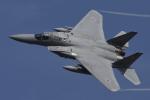eikas11さんが、新田原基地で撮影した航空自衛隊 F-15J Eagleの航空フォト(写真)